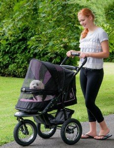 Pet Gear NV Pet Stroller Review