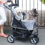 Gen7Pets Dog Stroller