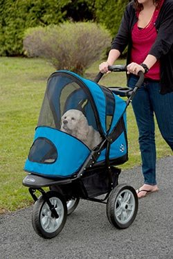 pet-gear-at3-generation-2-all-terrain-pet-stroller