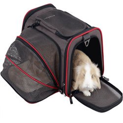Petsfit Expandable Travel Carrier Airline Approved Pet Carrier