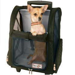 Snoozer Backpack carrier