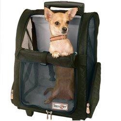 Snoozer Backpack carrier